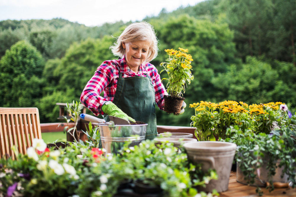 Learn How to Care for a Garden If You Are a Senior-Or Should You Rather Give Up?